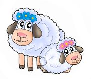 Sheeps. Color illustration of two white sheeps stock illustration