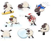 Sheeps Zdjęcia Stock