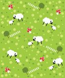 Sheeps background Stock Photography