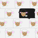 Sheeps Stock Photography