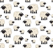 Sheeps. Cute cartoon pattern maded from sheeps Royalty Free Stock Photos