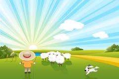 Sheeps and dog Stock Image