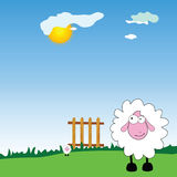 Sheeps on the farm cartoon  Stock Photo