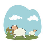 Sheeps in the field. Vector illustration design Stock Image