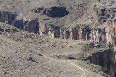 Sheeps and goats grazing on Ihlara canyon, Turkey Stock Image