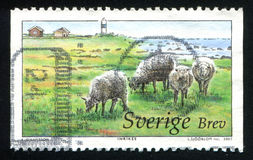 Sheeps and lighthouse in Oland Moorland. SWEDEN - CIRCA 2003: stamp printed by Sweden, shows Sheeps and lighthouse in Oland Moorland, circa 2003 stock image