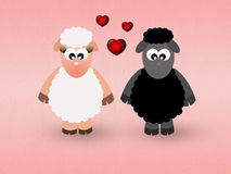 Sheeps in love Stock Photos