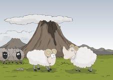 Sheeps nelle montagne Fotografia Stock Libera da Diritti