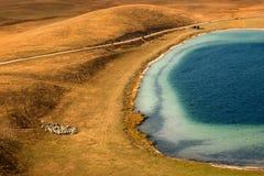 Sheeps op weiland dichtbij het meer op hoogland Royalty-vrije Stock Afbeelding