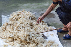 Sheeps processing of sheep`s wool traditional Stock Images