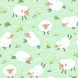 Sheeps seamless. Cute cartoon seamless pattern with sheeps Stock Photos