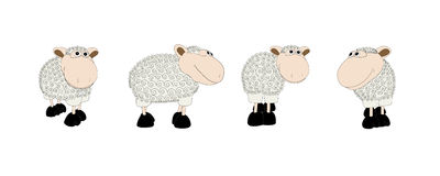Sheeps set. Vector illustration. Stock Image