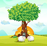 Sheeps under tree house Stock Images