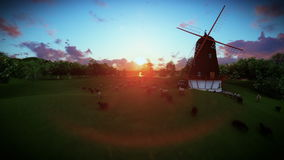 Sheeps and windmill on green meadow, sunset stock video
