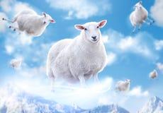 Sheeps in wolken Stock Fotografie