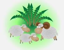 Sheepsfamilie Stock Afbeelding