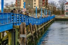 Sheepshead Bay, Brooklyn, US - Ocean Avenue Pedestrian Bridge. Sheepshead Bay, Brooklyn, US - Ocean Avenue Pedestrian Bridge stock photos