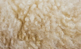 Sheepskin Background Royalty Free Stock Photos