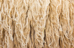 Sheepskin Background Royalty Free Stock Image