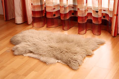 Sheepskin carpet on wooden floor. Piece of sheepskin on wooden floor next to a window with a red curtain Stock Photos