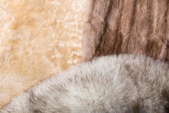 Sheepskin, Mink and Fox Furs Stock Images