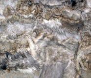 Sheepskin Patchwork. Royalty Free Stock Photo