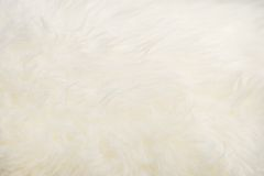 Sheepskin texture Stock Images