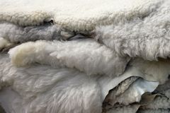 Sheepskins Stock Photo