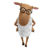 Sheepy with eyeglasses Royalty Free Stock Photos