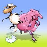 Sheepy and Piggy dancing. Cartoon drawing of sheep and a pig dancing and jumping Royalty Free Stock Photos