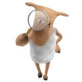 Sheepy - Recherche Lizenzfreie Stockbilder
