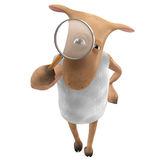 Sheepy - search Royalty Free Stock Images