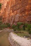 Sheer cliffs confine the Virgin River. On the forested Riverside Walk in Zion National Park, Utah Stock Photos