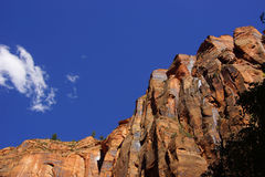 Sheer cliffs confine the Virgin River Royalty Free Stock Image