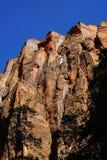 Sheer cliffs confine the Virgin River Stock Image