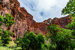 Sheer Cliffs of Zion National Park, Utah. Stock Photography