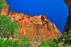 Sheer cliffs at Zion NP Stock Photo