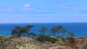 Sheer Contrast. Torrey Pines State Natural Reserve Royalty Free Stock Photo