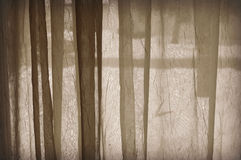 Sheer Curtain Royalty Free Stock Photography