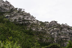 Sheer rock, looking like steep mountain wall Royalty Free Stock Photo