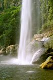 Sheer waterfall in countryside. Scenic view of sheer waterfall with wooded mountainside in background, Chiapas, Mexico stock photo