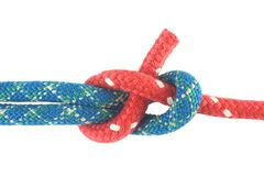 Sheet bend. Strength and security Stock Photography