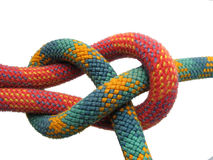Sheet bend. Isolated sheet bend knot with red and green climbing ropes Stock Image
