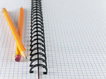 Sheet in a cage with two pencils Royalty Free Stock Image