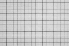 Sheet of checkered paper Royalty Free Stock Photos
