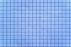 Sheet of checkered paper Royalty Free Stock Photography