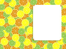 Sheet and citruses. Template for text with a citrus background Stock Images