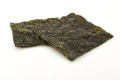 Sheet of dried seaweed Stock Image