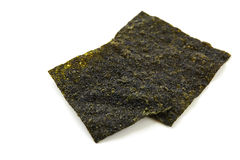Sheet of dried seaweed Stock Photography