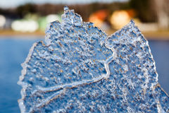 Sheet of ice Stock Photography